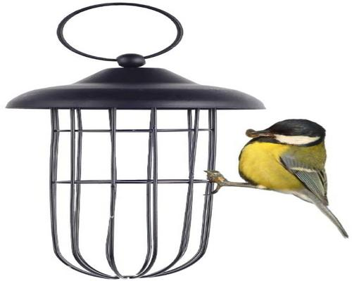 A Squirrel Resistant Metal Bird Feeder