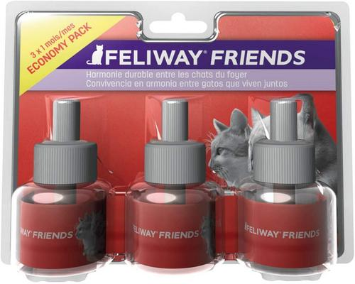 a Feliway Friends Solution