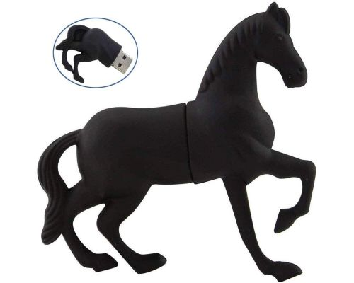 Ein 32 GB Black Horse USB-Stick