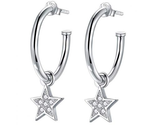 A Pair of Silver Star Earrings